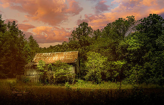 Back Road Barn by Marvin Spates