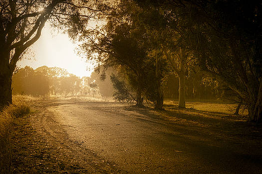 Back Road Morning by Ray Warren