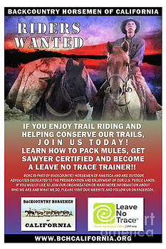 Backcountry Horsemen Join Us Poster II by Rhonda Strickland