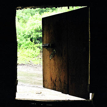 Backdoor of dhaba in Arunachal Pradesh, India by Iqbal Misentropy