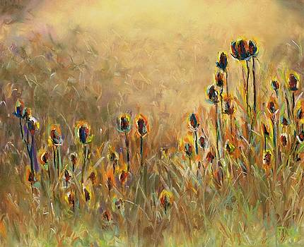 Backlit Thistle by Frances Marino