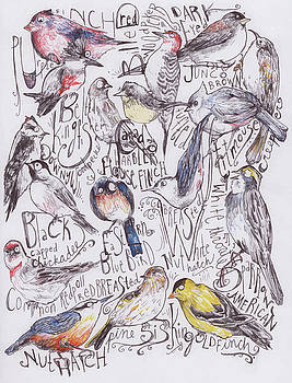 Backyard Birds of Maine by Hannah Dean
