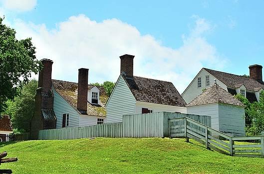 Backyard Colonial Dwellings by Richard Ortolano