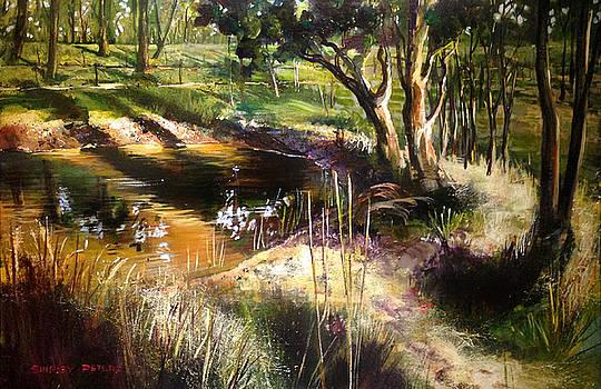 Backyard Dam at Mulgoa by Shirley  Peters