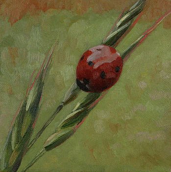 Backyard Ladybug by Amy Tennant