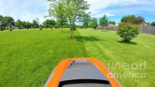 Backyard Mowing by Ricky L Jones