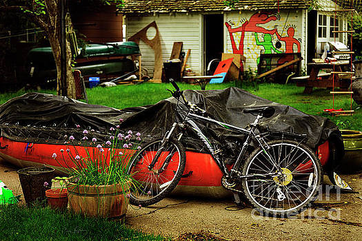 Backyard Neighborhood Bicycle by Craig J Satterlee