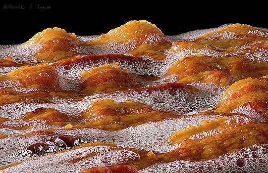 Warren Sarle - Bacon