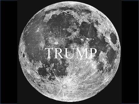 Gary Canant - Bad Dream Trump Full Moon