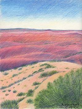 Badlands by Harriet Emerson