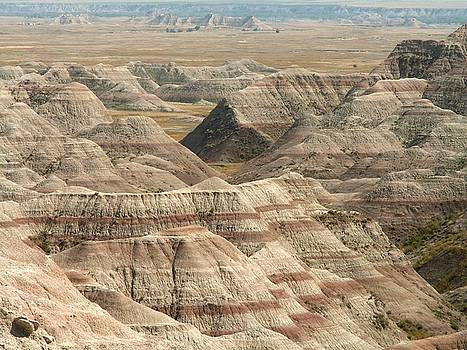 Badlands Hills by Theresa Willingham