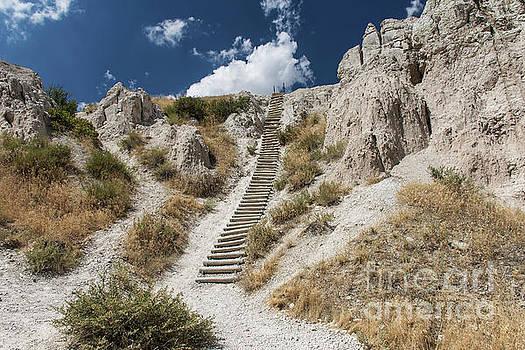 Badlands Notch Trail Ladder by Jason Kolenda