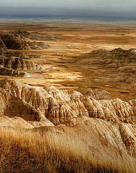 Badlands by Ron  McGinnis