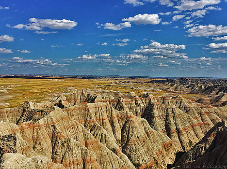 Badlands to Plains by Teri Ridlon