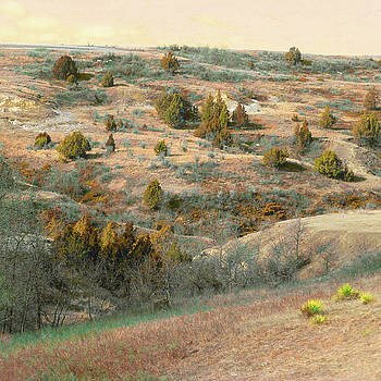 Badlands Tree Reverie by Cris Fulton
