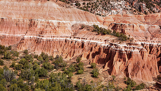 Badlands Utah Red Cliffs by David Millenheft