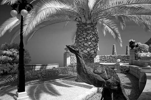 Zoriy Fine - Bahai Gardens Haifa