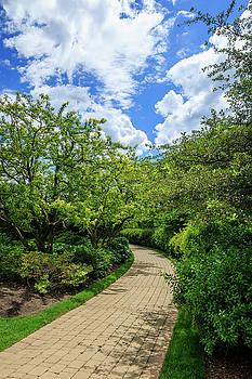 Baha'i Temple Garden Path by Joni Eskridge