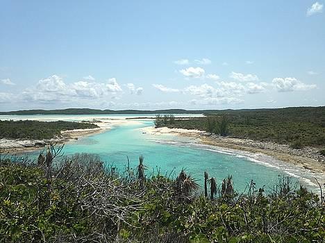 Bahama Lagoon  by Erin Clausen