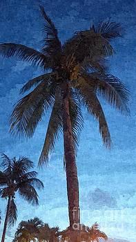 Bahamas Palms at Dusk by Jennifer Capo