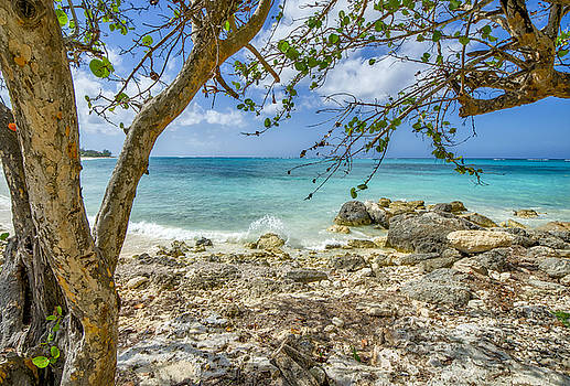 Jeremy Lavender Photography - Bahamian Scenery on New Providence Island