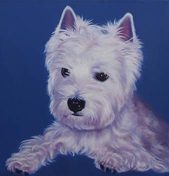 Bailey by Deborah Plath