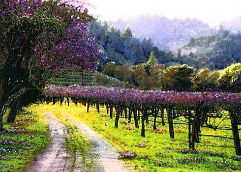 Bailey Purple vineyard by Paul Bailey