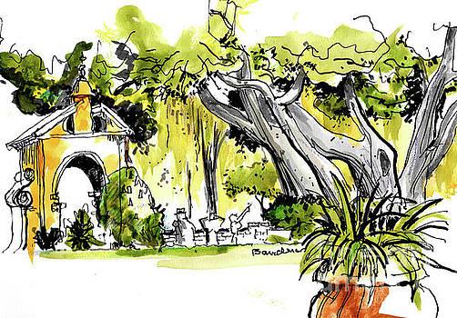 Balboa Park San Diego 1 by Terry Banderas