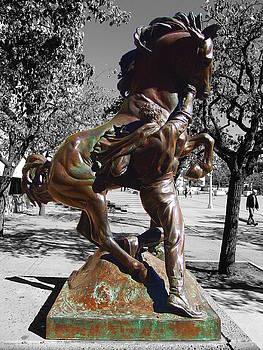 Glenn McCarthy Art and Photography - Balboa Park San Diego - Horse Trainer