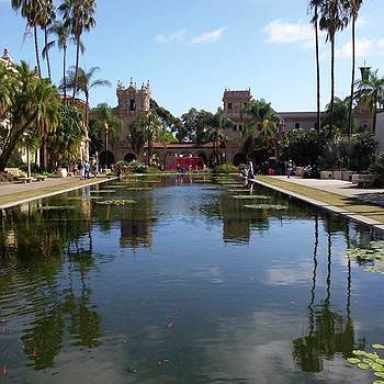 #balboapark #sandiego #pond #lilypads by Gayle Faucette Wisbon