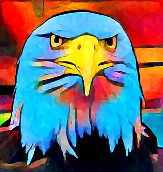 Bald Eagle 2 by Chris Butler