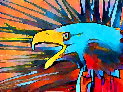Bald Eagle 3 by Chris Butler
