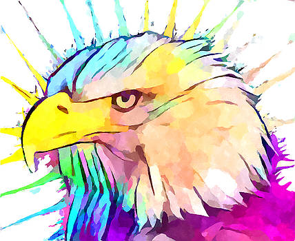 Bald Eagle 4 by Chris Butler