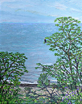Bald Eagle at Virmond Park by Richard Wandell