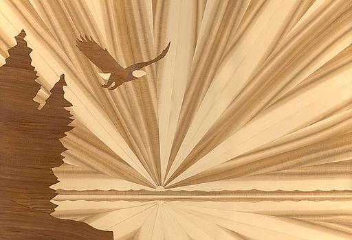 Bald Eagle by Glen Stanley