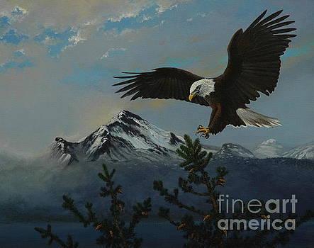 Bald Eagle High by Michael Nowak
