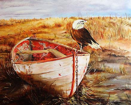 Bald eagle on abandoned boat by Steve James