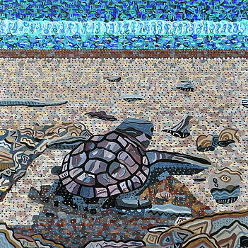 Bald Head Island, Loggerhead Sea Turtle by Micah Mullen