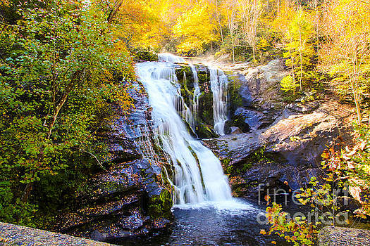 Bald River Falls II by Marilyn Carlyle Greiner