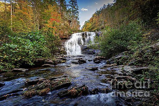 Bald River Falls by Joan McCool