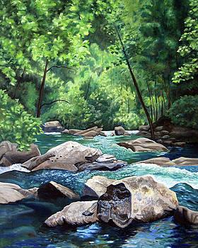Bald River Falls by Nancy Viola