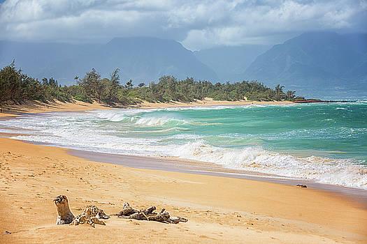 Randy Hall - Baldwin Beach