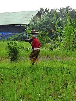 Balinese lady carrying pot by Exploramum Exploramum