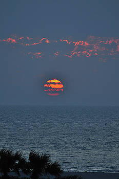 Ball of Fire vertical by Peter  McIntosh