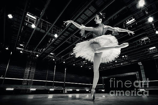 Dimitar Hristov - Ballerina in the white tutu