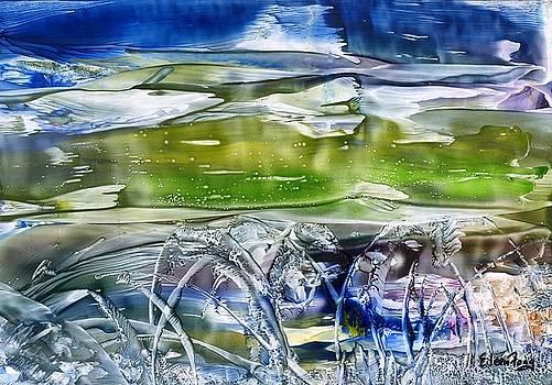 Ballet in the Sea by Eileen  Fong