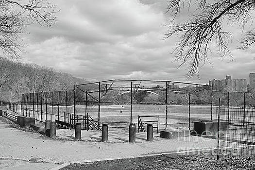 Ballfields by Cole Thompson
