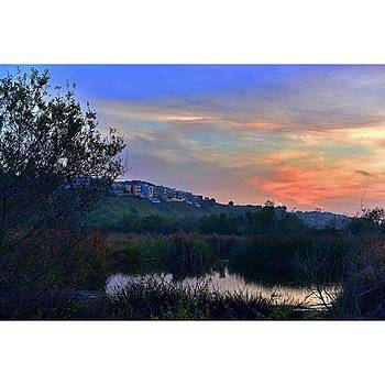 #ballonacreek #playadelrey #nature by Timothy Guest