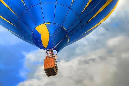 Balloon Flight by Dyle   Warren