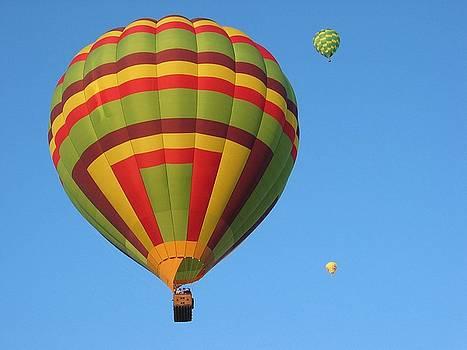 Margaret Fortunato - Balloons New Mexico
